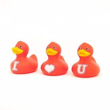 Bud Ducks Mini luxury I Heart You Duck Set